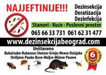 Najjeftinija dezinsekcija, dertizacija i dezinfekcija u Beogradu